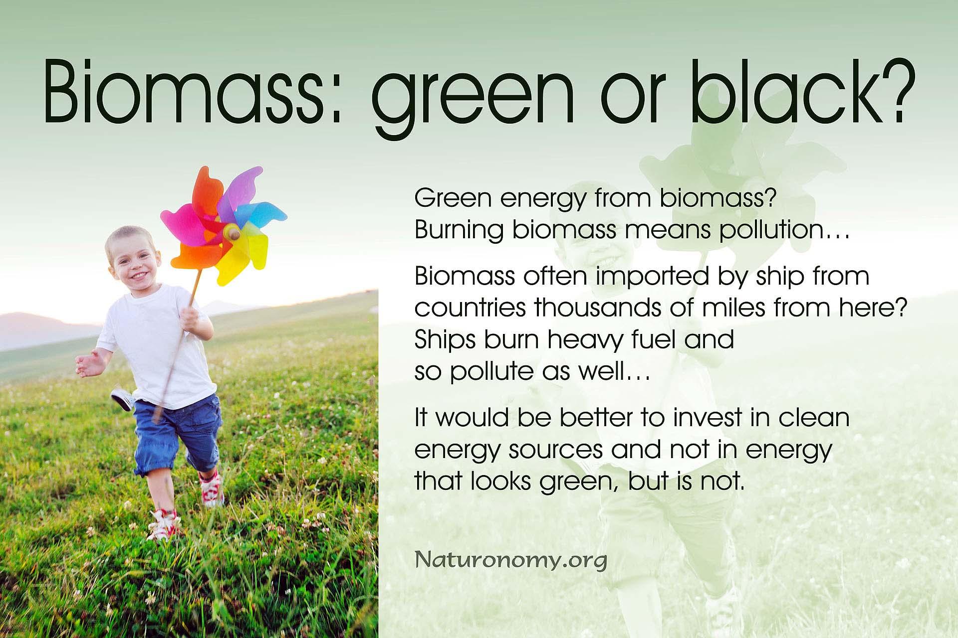 Biomass: green or black?