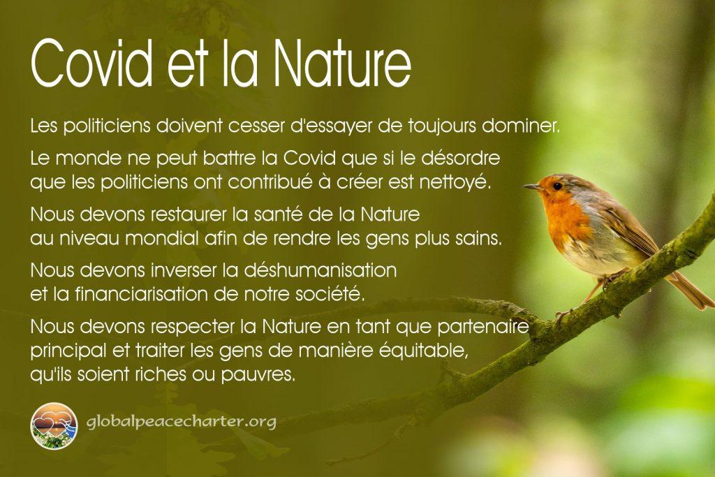 Covid et la Nature
