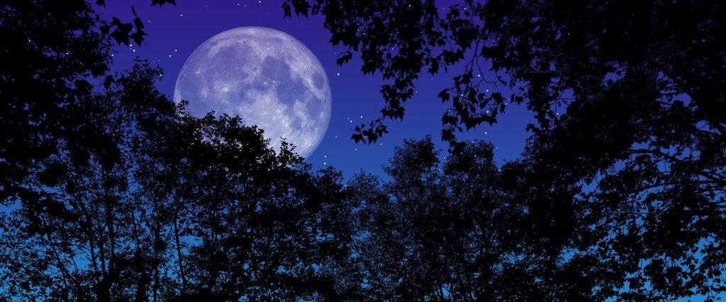 Appello di solidarietà dalla Luna