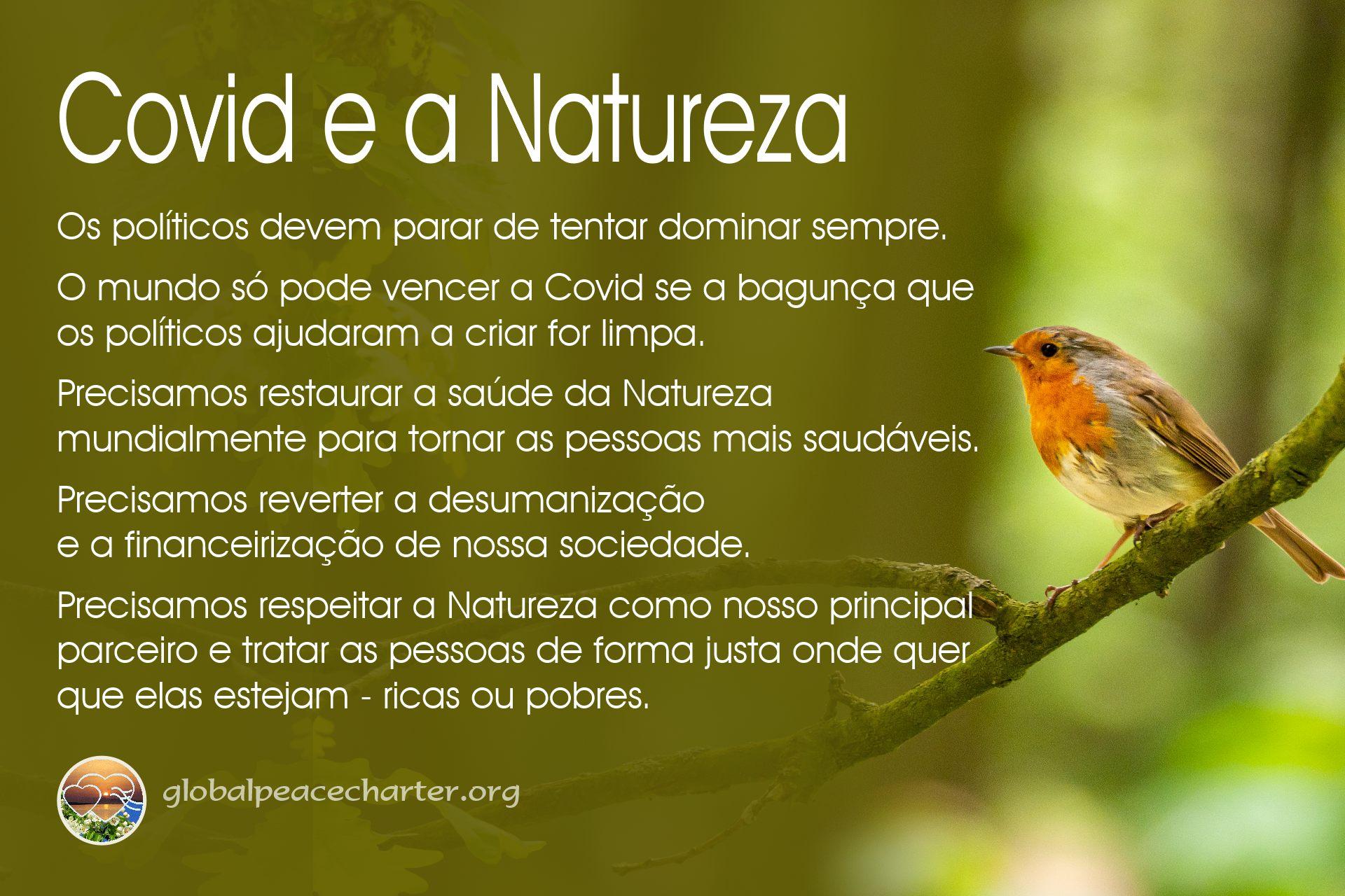 Covid e a Natureza