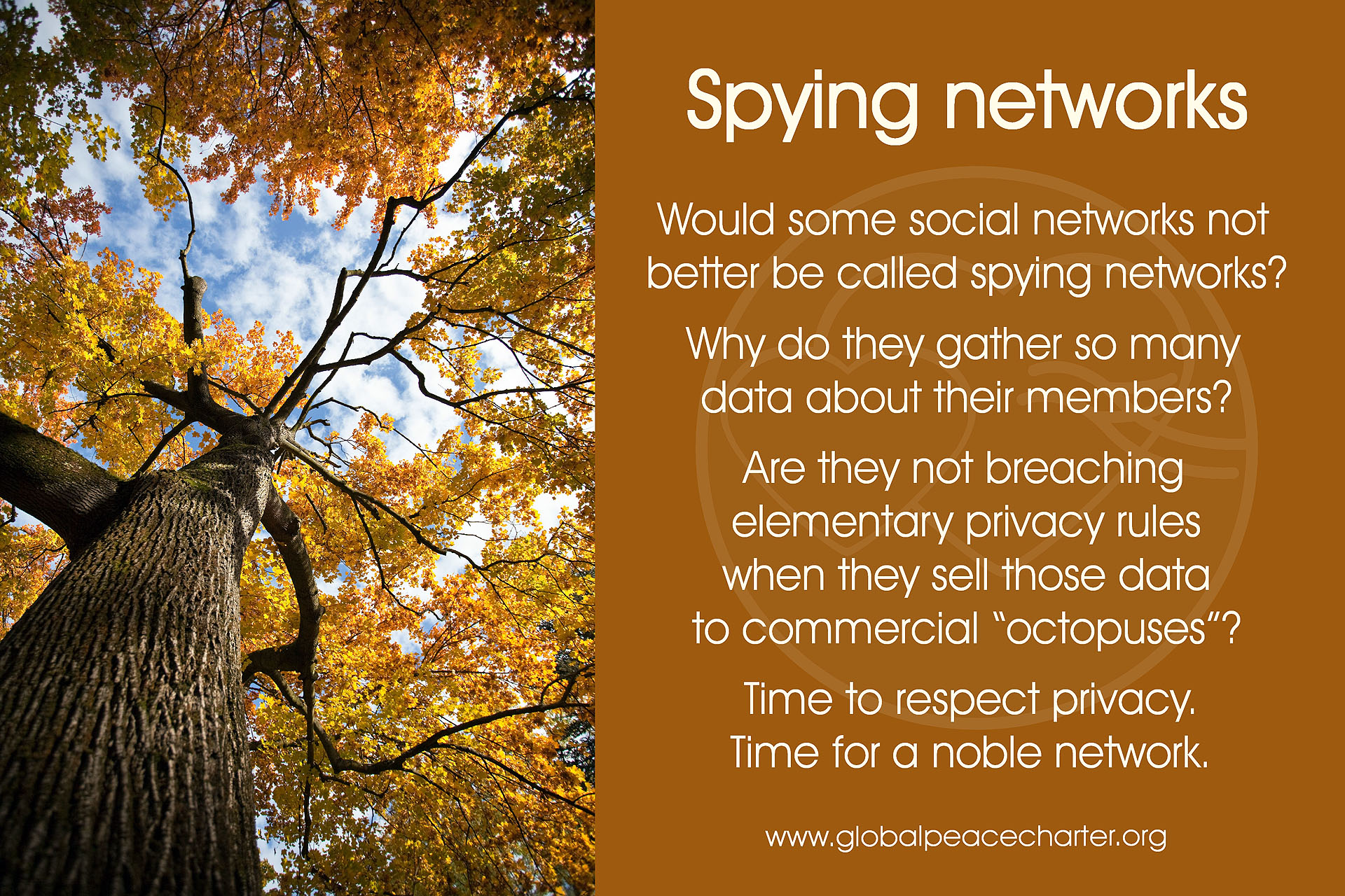 Spying networks