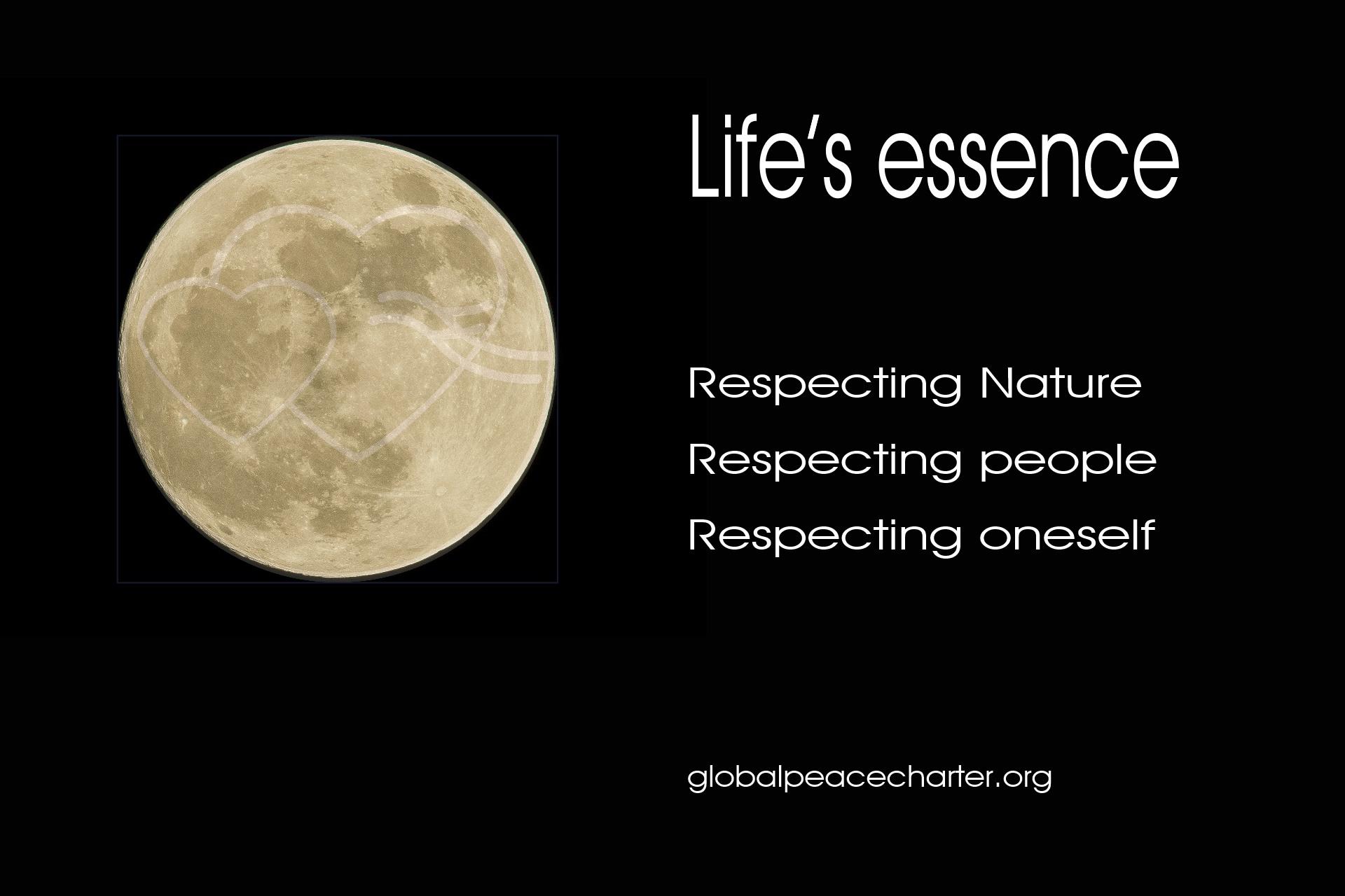 Life's essence