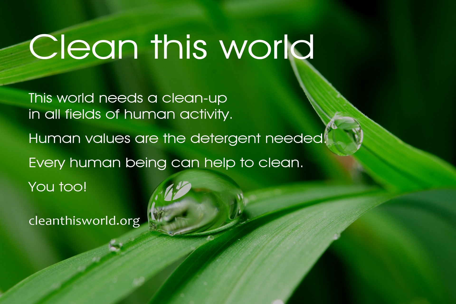 Clean this world