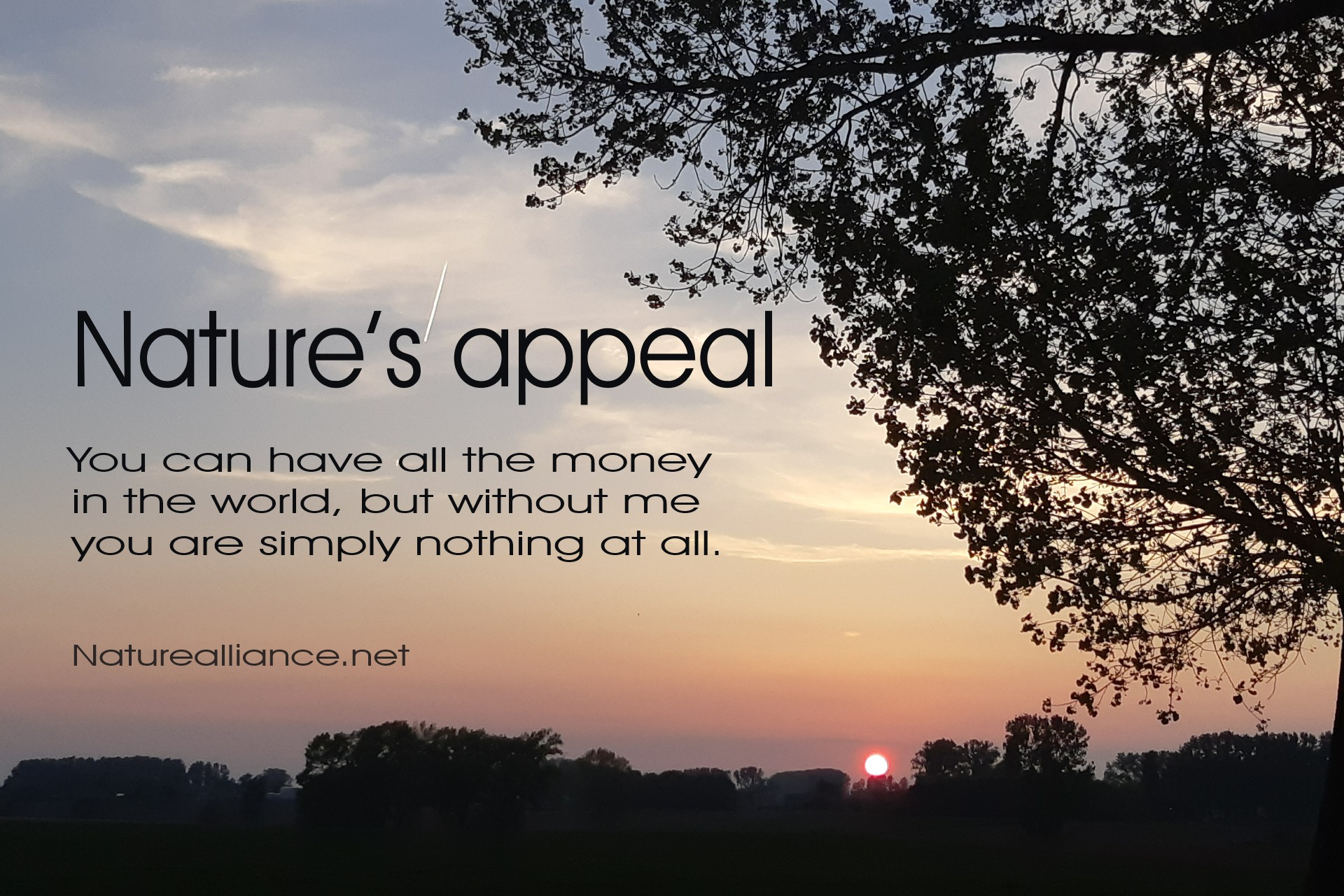 Nature's appeal
