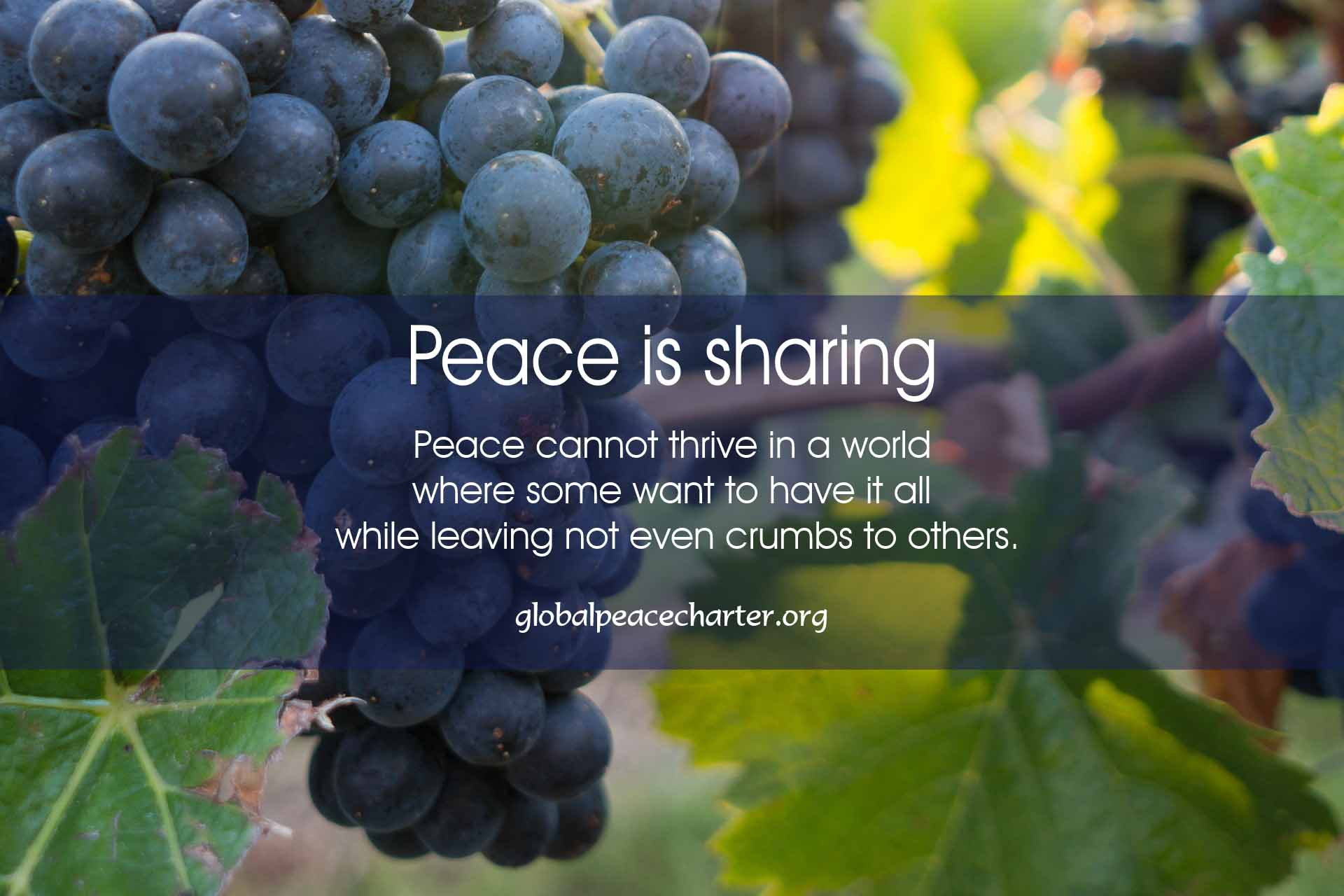 Peace is sharing