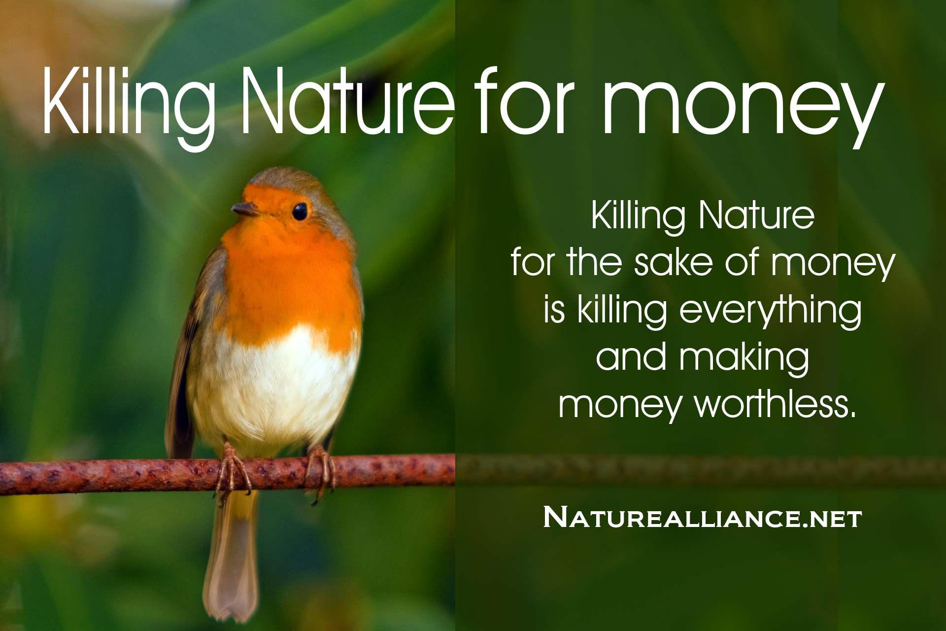 Killing Nature for money
