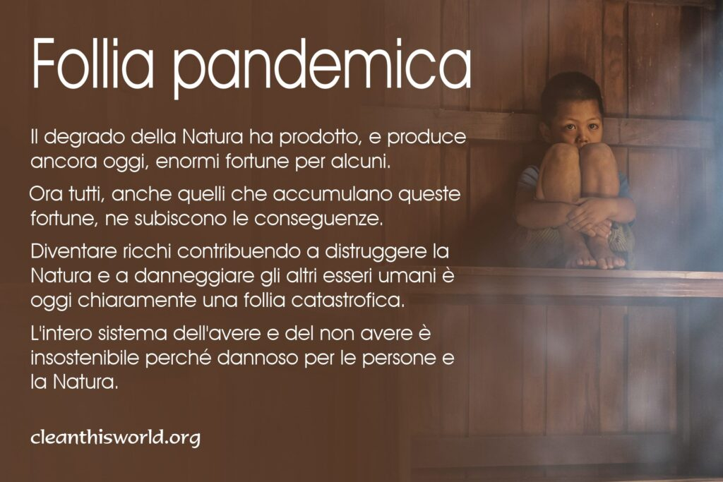Follia pandemica