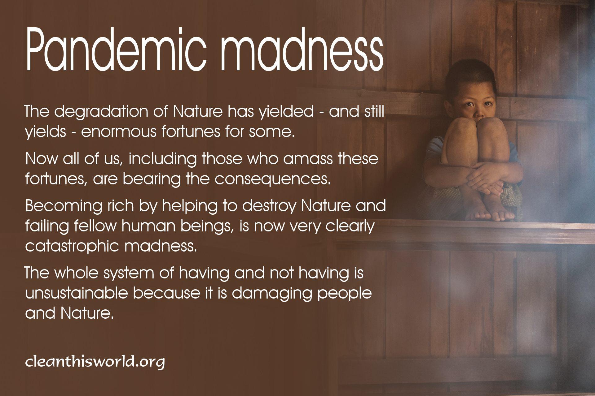 Pandemic madness